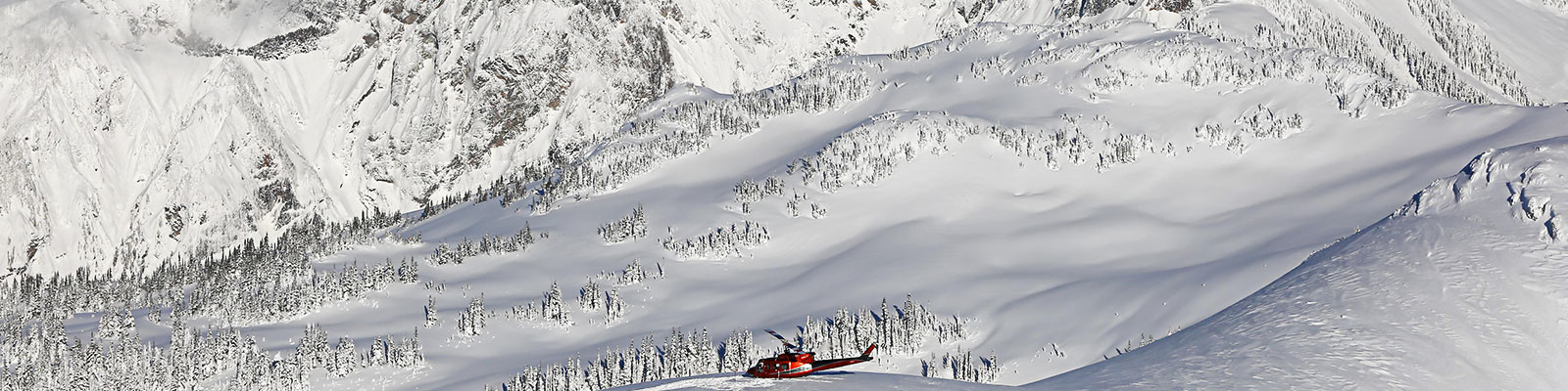 Heli and Cat skiing and snowboarding in Whistler Canada